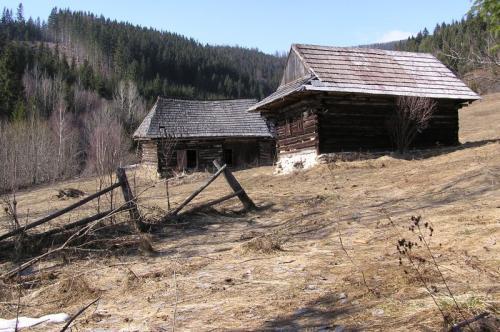 Sumiac jar 2006- 16